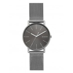 Skagen Mens Signatur Stainless Steel Grey Dial Mesh Strap Watch SKW6577