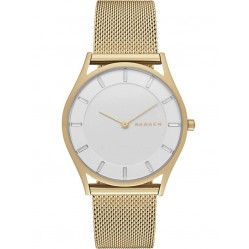 Skagen Ladies Holst Gold Watch SKW2377