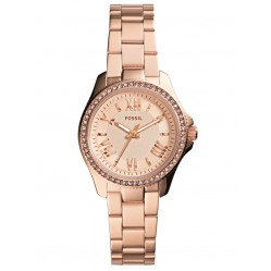Fossil Ladies Cecile Watch AM4578