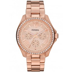 Fossil Ladies Cecile Watch AM4483