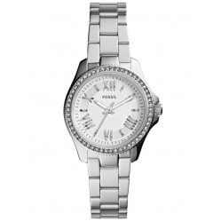 Fossil Ladies Cecile Watch AM4576