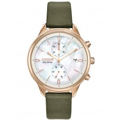 Citizen Ladies Eco Drive Watch FB2008-01D