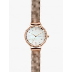 Skagen Ladies Anita Mesh Watch SKW2865