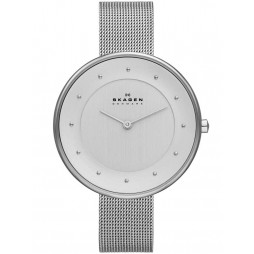 Skagen Ladies Mesh Bracelet Watch SKW2140