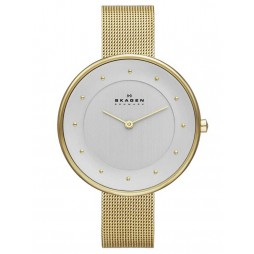 Skagen Ladies Gitte Gold Plated Mesh Bracelet Watch SKW2141
