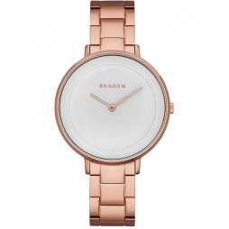 Skagen Ladies Ditte Bracelet Watch SKW2331
