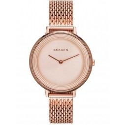 Skagen Ladies Ditte Bracelet Watch SKW2334