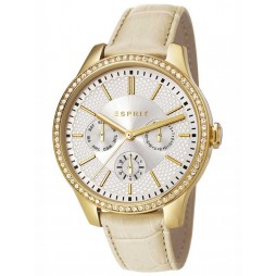 Esprit Ladies Gold Plated Strap Watch ES107132003