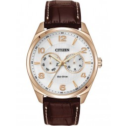 Citizen Mens Eco-Drive Watch AO9023-01A
