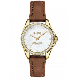 Coach Ladies Tristen Gold Plated Watch 14502314
