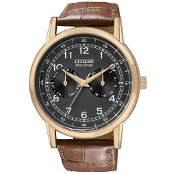 Citizen Mens Eco Drive Watch AO9003-08E