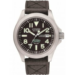 Citizen Mens Eco-Drive Watch BN0110-06E
