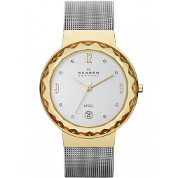 Skagen Ladies Two Tone Mesh Bracelet Watch SKW2002